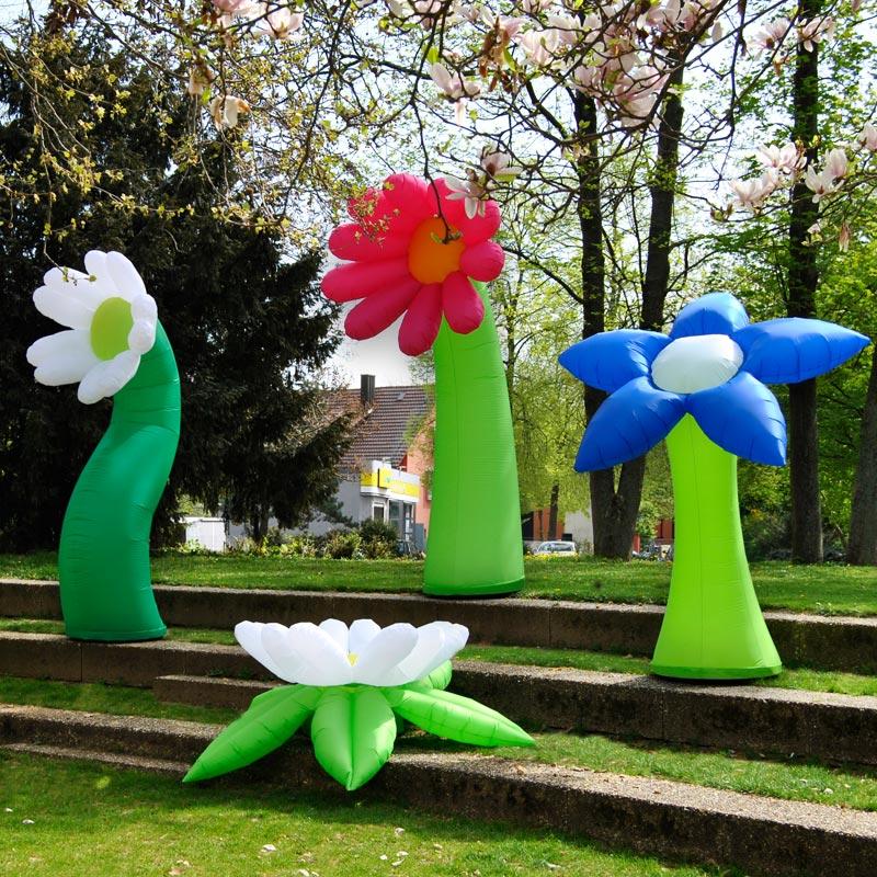 FLOWER Bunt Beitragsbild
