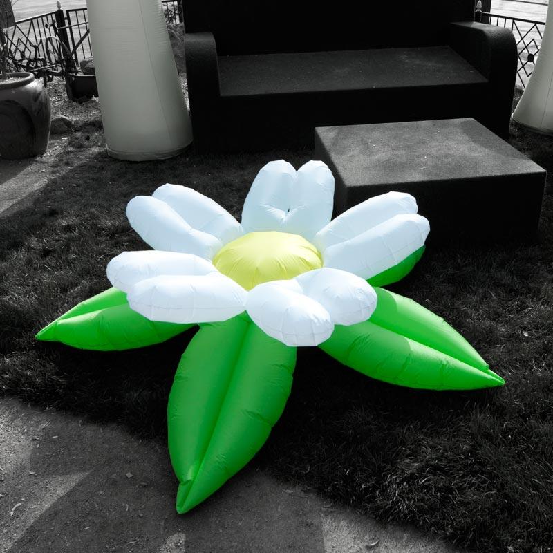 MINI FLOWER Mit Fünf Verschiedenen Blütenformen