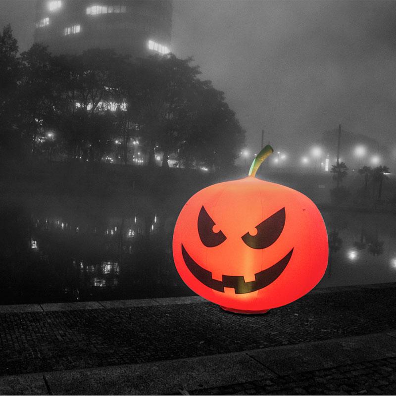 pumpkin_001_beitragsbild