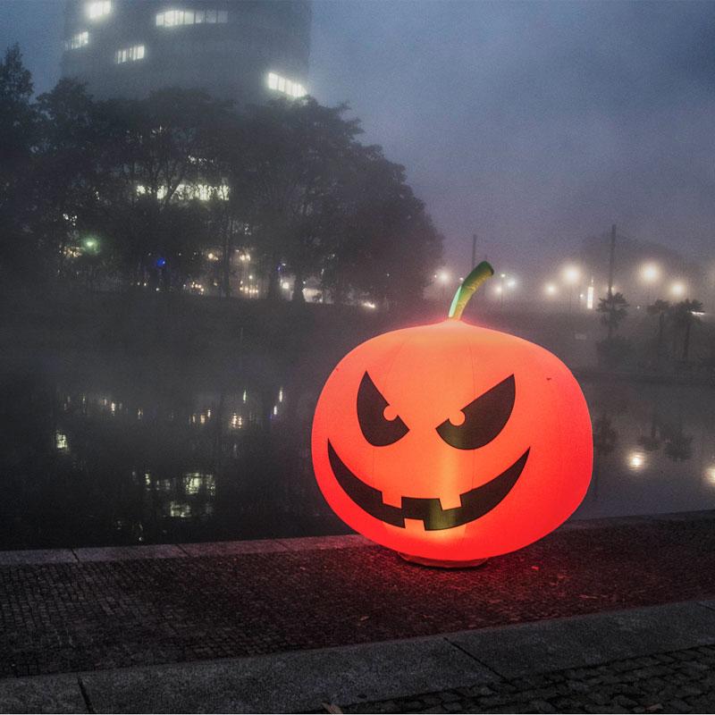 pumpkin_001_bunt_beitragsbild